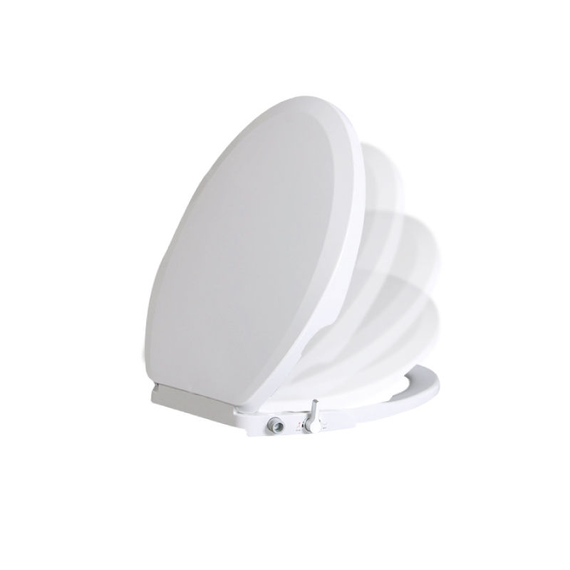 non-electric-bidet-toilet-seat-for-elongated-toilet-easy-_57