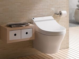 A secret that 8 things you never know a bidet seat could do what for your healthier life
