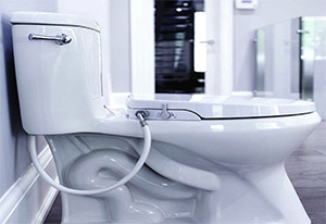 How to fit a Bidet Seat on Your Toilet