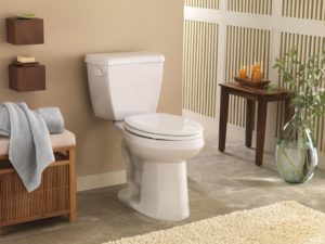 How to Replacement a Toilet Flush Valve From HTD Manufacturers